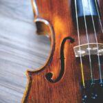 El mejor top de disfraz violin…